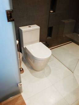 Toilet and shower after renovation