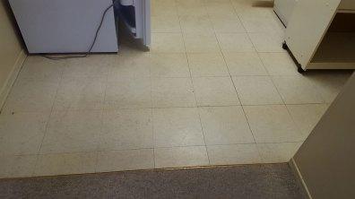 Floor Before Renovation