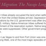 Navajo Label