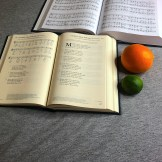 78084-Brebeuf-Comparison-Catholic-Hymnals-Hymn