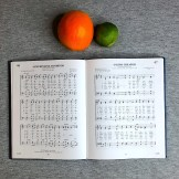 77963-SSPX-Traditional-Roman-Hymnal-Comparison-Catholic-Hymn