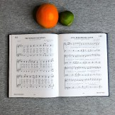 77965-SSPX-Traditional-Roman-Hymnal-Comparison-Catholic-Hymn
