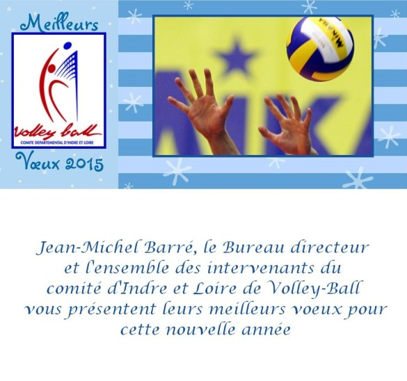 voeux CD 37 Volley-Ball 2015