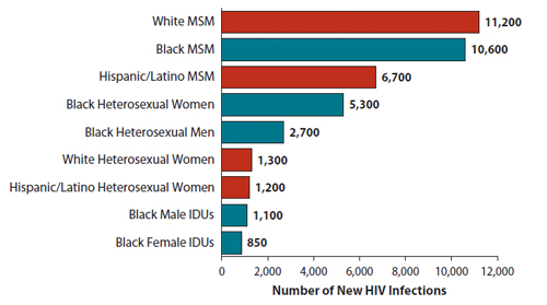 "Shown here is a vertical bar chart titled, ""Estimates of New HIV Infections in the United States, 2010, for the Most Affected Subpopulations"".    White MSM  = 11,200  Black MSM  =  10,600  Hispanic/Latino MSM = 6,700  Black Heterosexual Women  = 5,300  Black Heterosexual Men = 2,700  White Heterosexual Women = 1,300  Hispanic/Latino Heterosexual Women = 1,200  Black Male IDUs = 1,100  Black Female IDUs = 850  Subpopulations representing 2% or less of the overall US epidemic are not reflected in this chart."