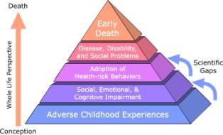Adverse Childhood Experiences (ACE) Study Pyramid