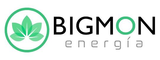 BIGMON Energía