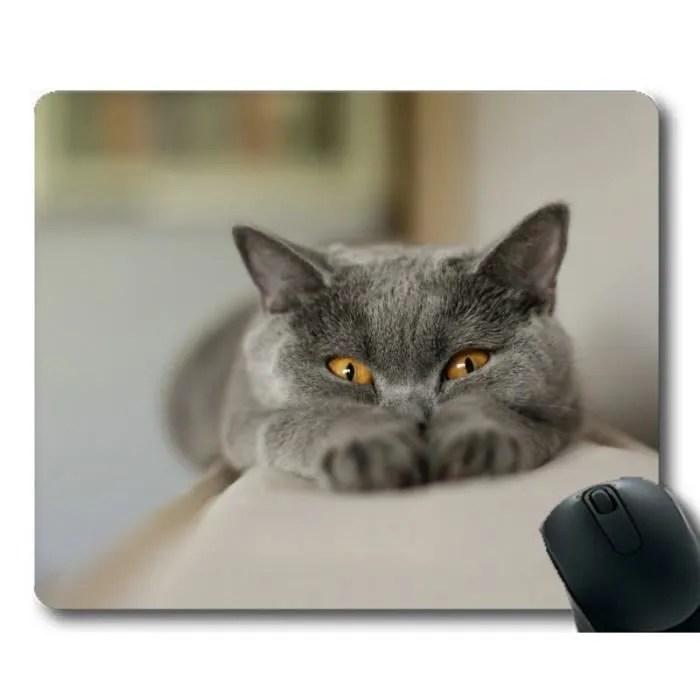tapis de souris tapis de souris chat rigolo anima