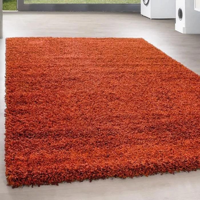 shaggy shaggy long pile pas cher terra tapis salon