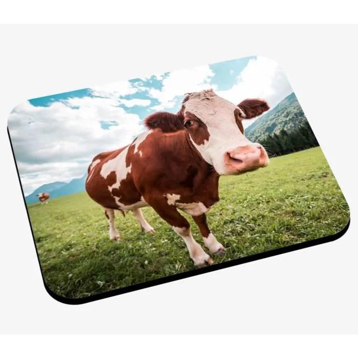grand tapis en peaux de vache
