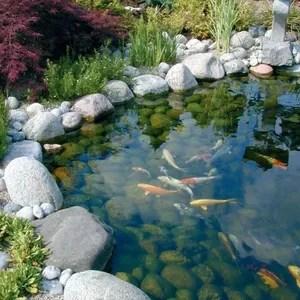 accessoire bassin cdiscount jardin