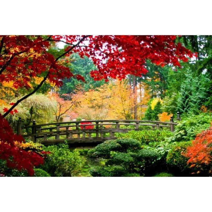 papier peint photo intisse 17v jardin japonais 3