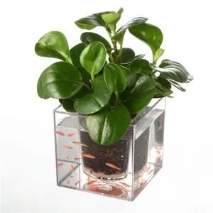 Pot Fleur Exterieur Avec Reserve Achat Vente Pas Cher