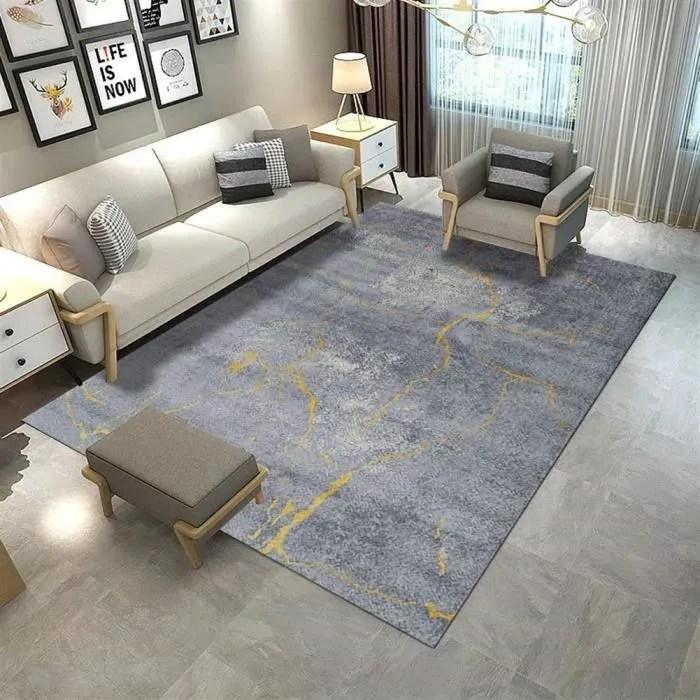 tapis de la table basse du salon minimaliste moder