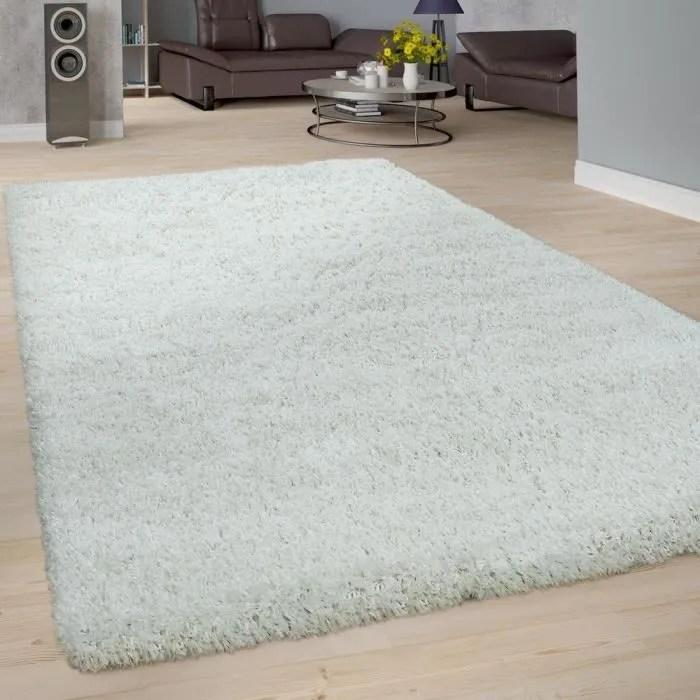 tapis poils longs salon doux shaggy moderne moelle