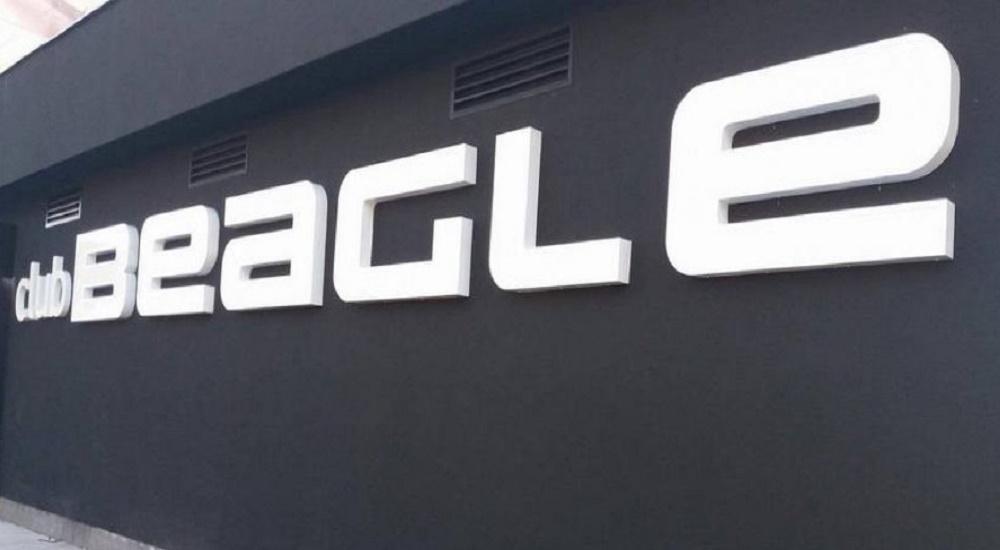 582f0fe7-8f64-4845-bf62-70430a0a0a69-beagle1-previewOrg.jpg