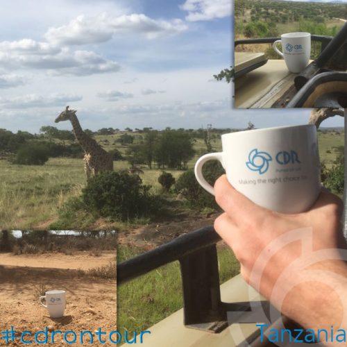 CDR Pumps in Tanzania