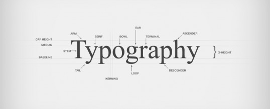 Type Classification Demystified: 11 Kinds of Letterforms