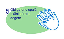 Spalare corecta maini 5