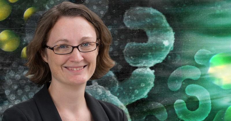 Light Wakes Up Freshwater Bacteria