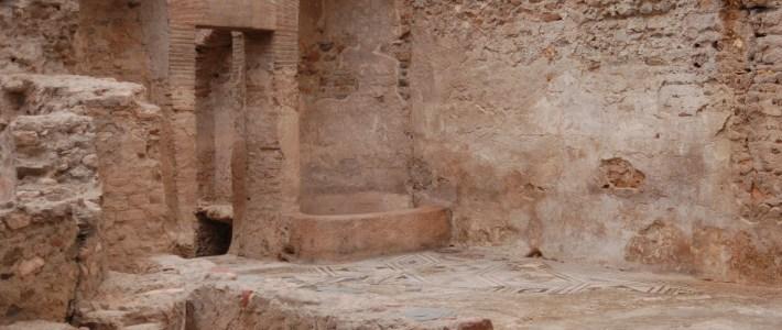 L'article del mes per Josep Maria Gelabert