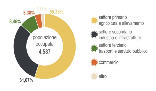 Figura 1. Percentuale di popolazione occupata.