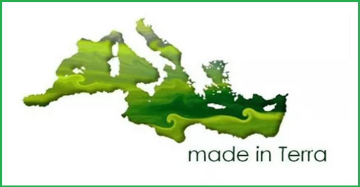 Made in Terra