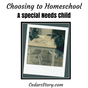 Choosing to Homeschool Special Needs Child