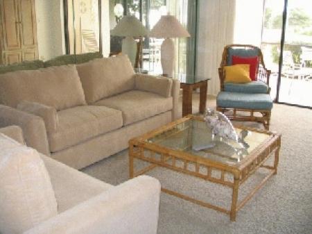c-102-livingroom