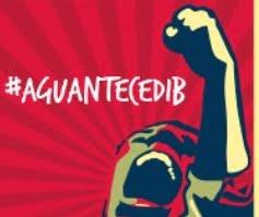 Apoyo y solidaridad con las voces ciudadanas independientes de CEDIB – Bolivia