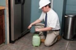 A professional pest control service
