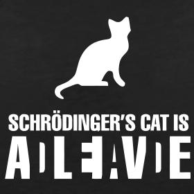 Shrodinger's cat is...
