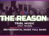 THE REASON WILDER TRIBL MUSIC