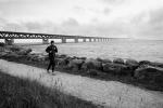 Puente de Oresund