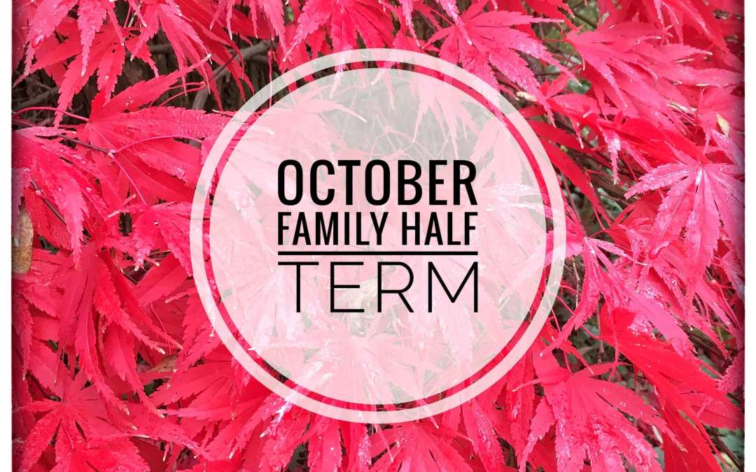 October Family Half Term- SPECIAL OFFER…