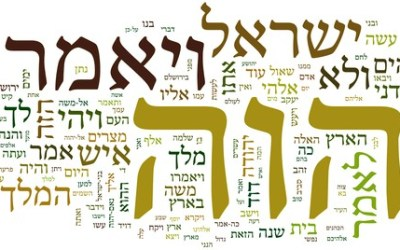 Biblical Hebrew: Insights for Beginners