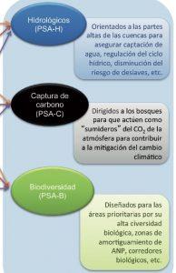 5-2_pago_servicios_ambientales