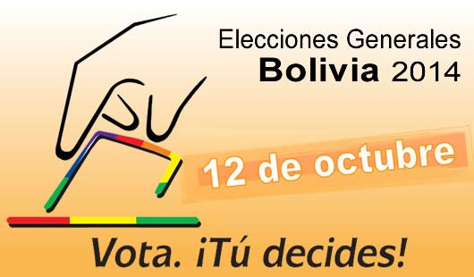 Elecciones Bolivia 2014, Informe CELAG