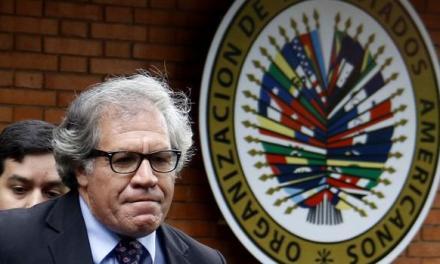 La pesada herencia de la OEA: oscura trayectoria y malas juntas