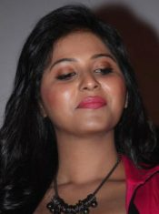 Anjali Upcoming films,Birthday date,Affairs