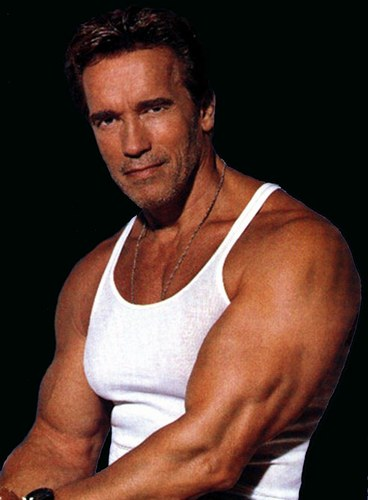 Arnold Schwarzenegger Body Size, Height And Weight 2014