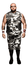 Bubba Ray Dudley Height, Weight, Age, Biceps Size, Body Stats