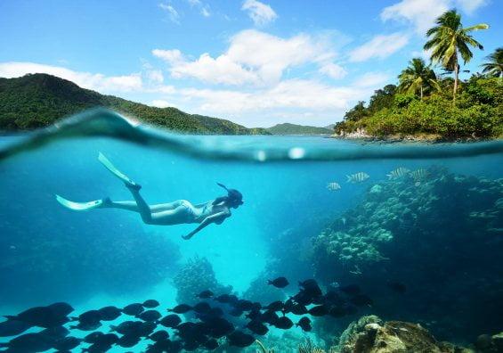 Dünyanın en güzel dalış yeri
