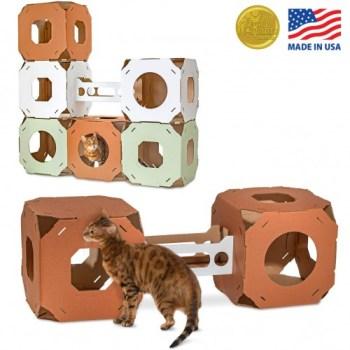 Amazon_CatCondos