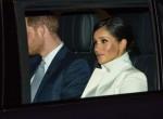 Il principe Harry e Meghan incinta partecipano al Gala della Terra più ampia