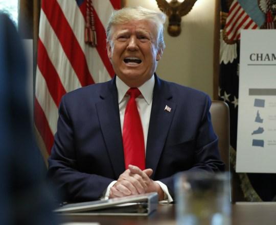 Trump tiene una riunione di gabinetto