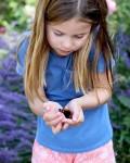 charlotte farfalla