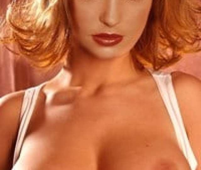With Her Big Tits Pouty Lips And Slutty Resting Bitch Face Katherine Heigl Was Certainly A Halal Fuck Back In Her Younger Years