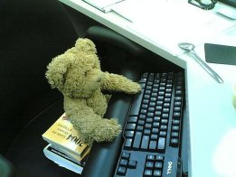blog-teddy-bear-work-day