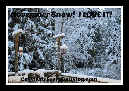 11-29-14 snow  2