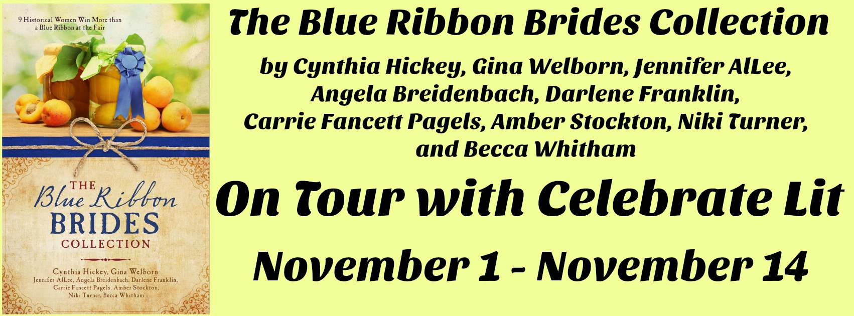 Blue Ribbon Brides Banner